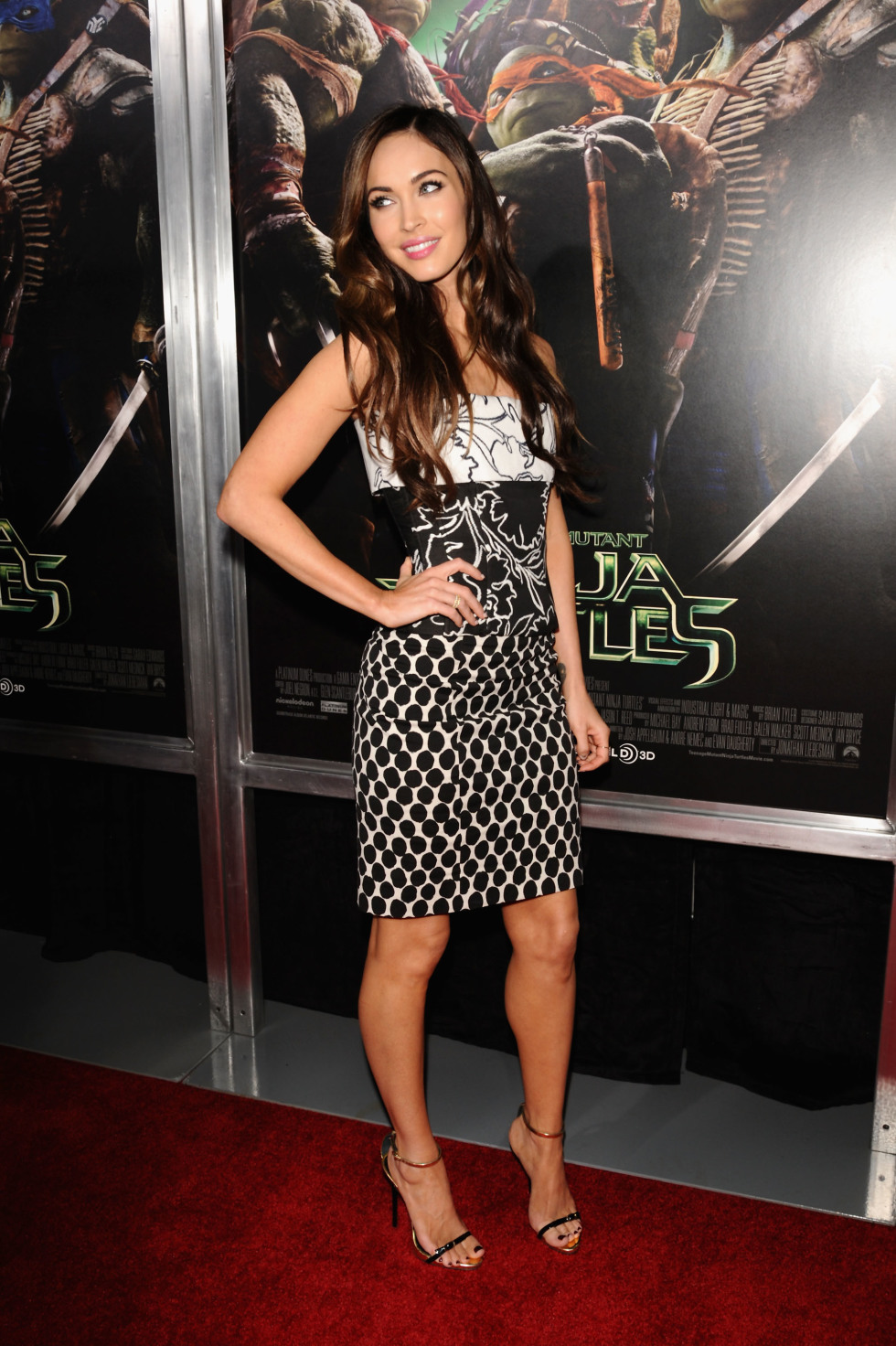 Megan Fox Wears Oscar De La Renta To Teenage Mutant Ninja