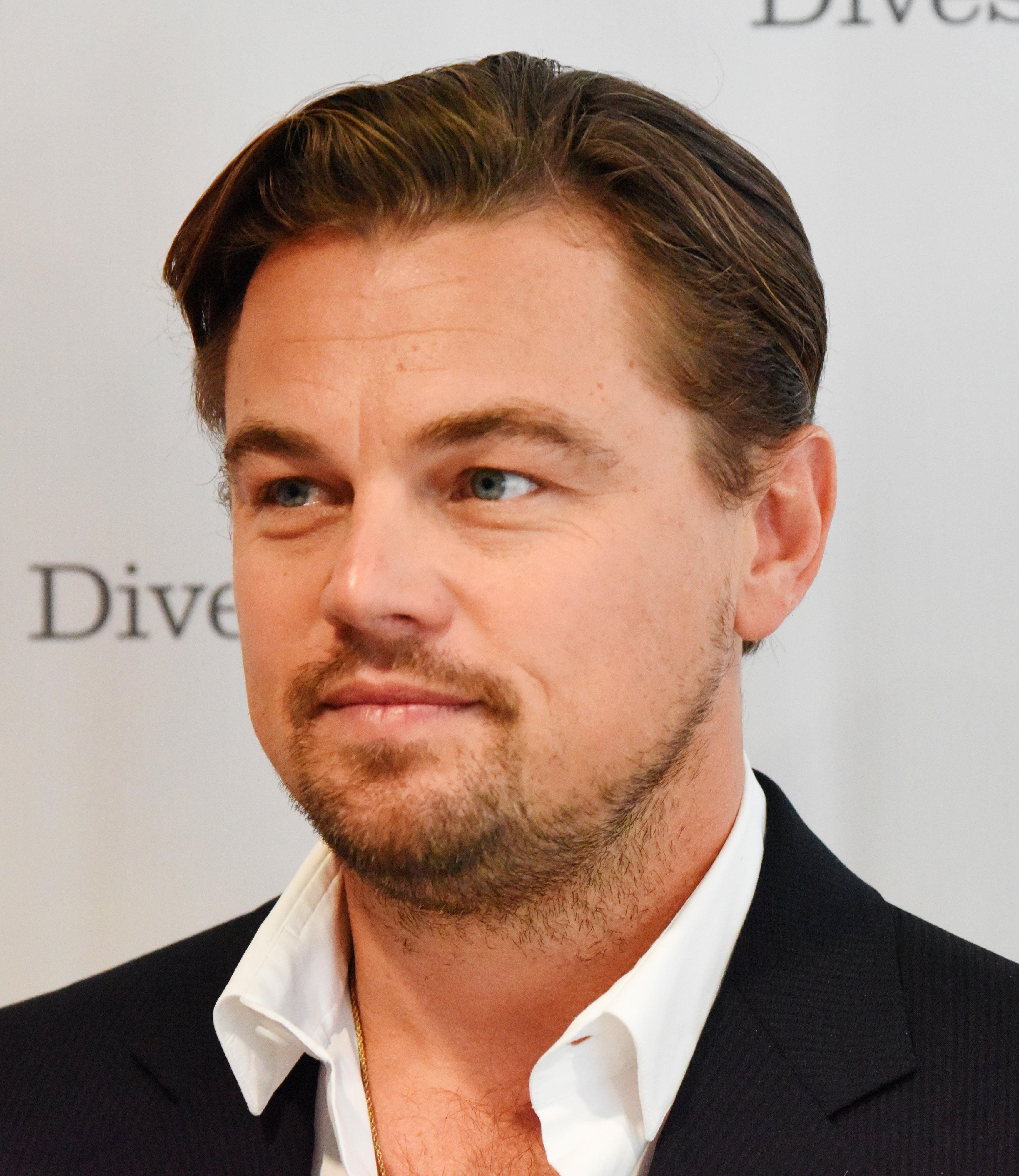 Leonardo DiCaprio has a Swedish lookalike Leonardo Dicaprio