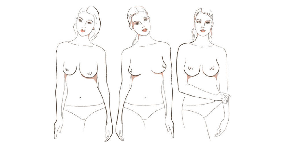 Types Of Tits 29
