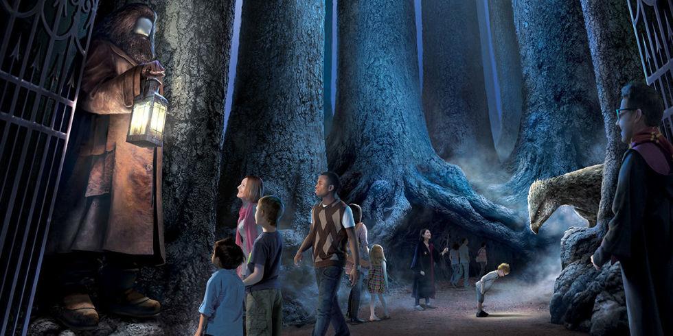 http://cosmouk.cdnds.net/17/04/980x490/landscape-1485530534-forbidden-forest.jpg